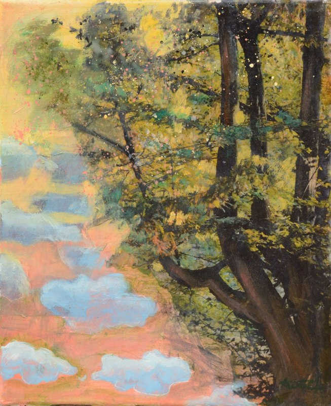 Les nuages de Valérie Auriel